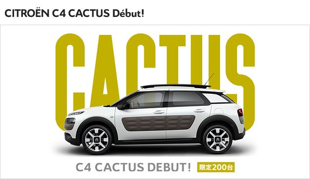 C4 CACTUS 完売です。
