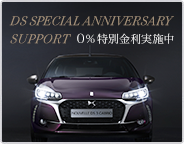 DS SPECIAL ANNIVERSARY SUPPORT