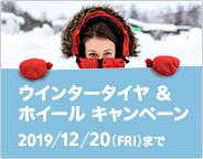 シトロエン ウインタータイヤ&ホイール キャンペーン 12.20(FRI)まで